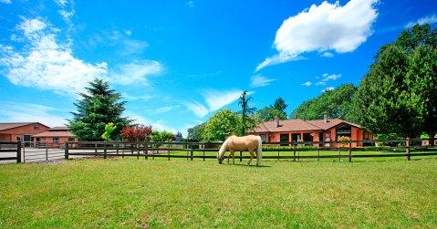 Barn-horse-pasture-WA-State_web