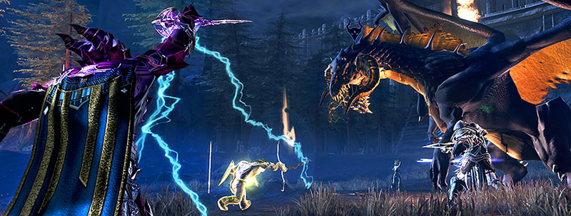 Siege of Neverwinter Banner