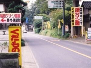 福田グリーン農園|茨城県の栗拾いが出来るおすすめのスポット