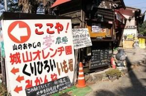 城山オレンヂ園|大阪の栗拾いが出来るおすすめスポット