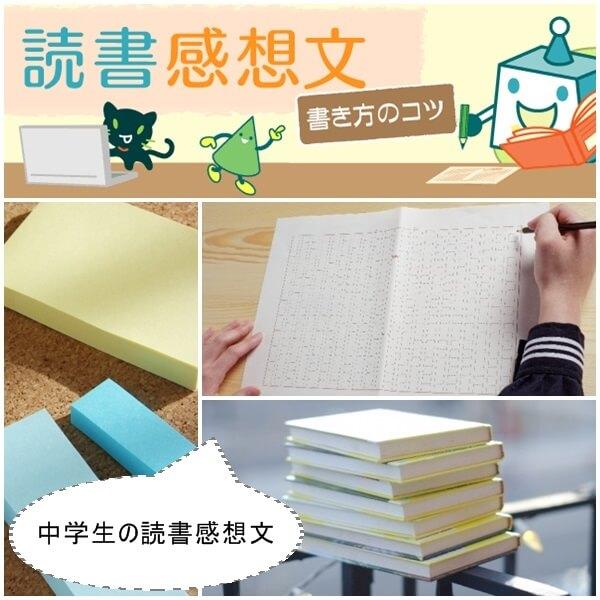 中学生の読書感想文の書き方のイラスト