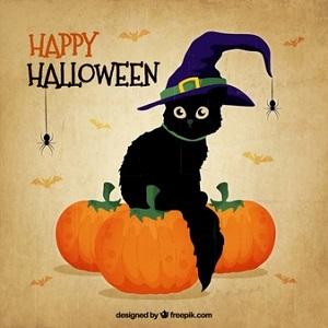ハロウィンに黒猫が魔女の帽子を被る