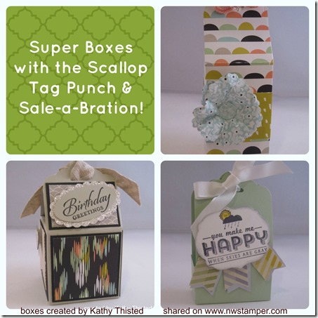 scallop tag punch boxes