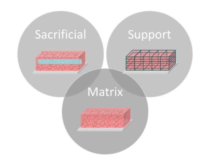 bioink diagram