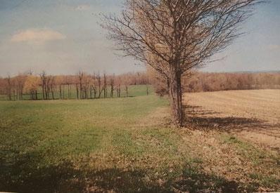 fruithurst-farm-2