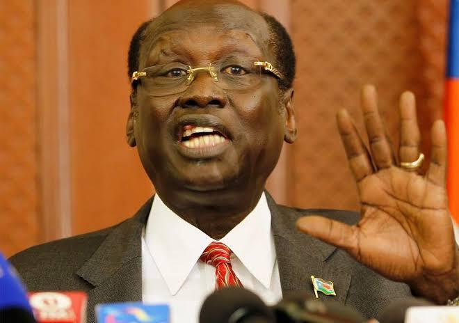 Former South Sudan foreign minister Dr. Barnaba Marial Benjamin (File/Supplied/Nyamilepedia)