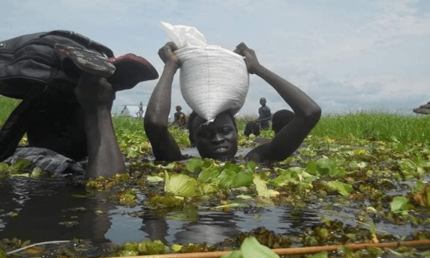 Residents of Jonglei State struggling through floods as their Village is submerged in the flood.(Photo credit: courtesy image)