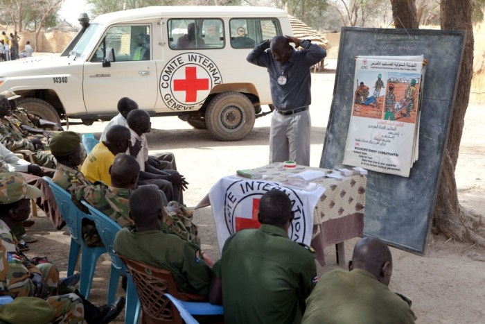Red Cross report paints gloomy future for South Sudan humanitarian situation