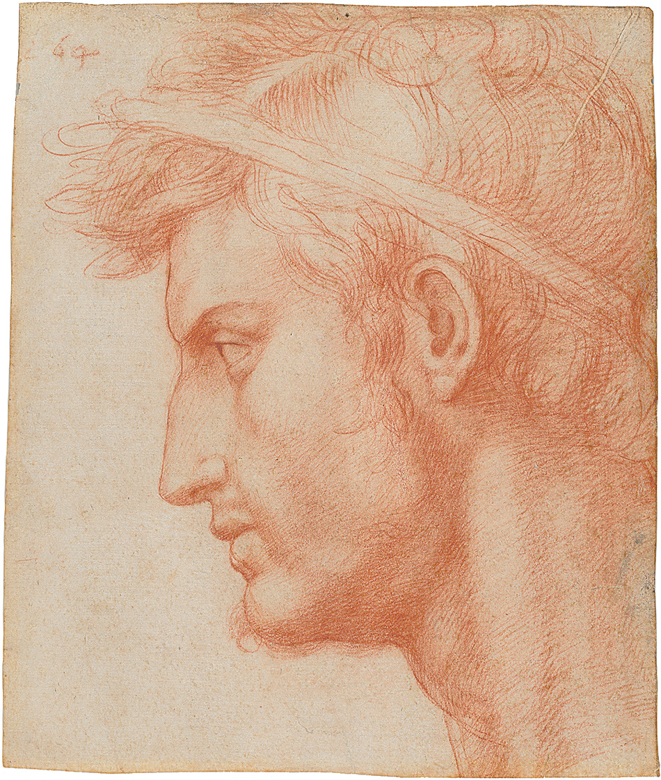 'Study for the Head of Julius Caesar'; drawing by Andrea del Sarto, circa 1520. It is on view in the exhibition at the Frick Collection reviewed by Ingrid Rowland on page 22 of this issue.