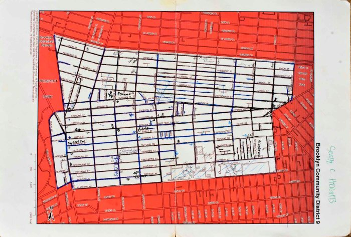 South Crown Heights Census Map