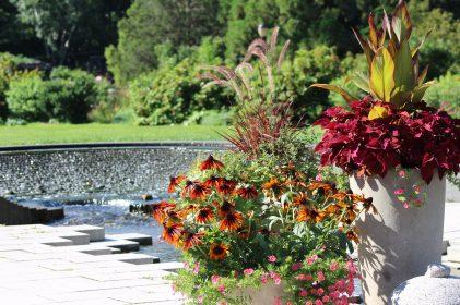 Queens Botanical Garden 33