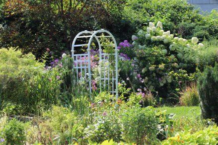 Queens Botanical Garden 43