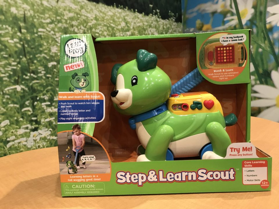 Step and Learn Scout
