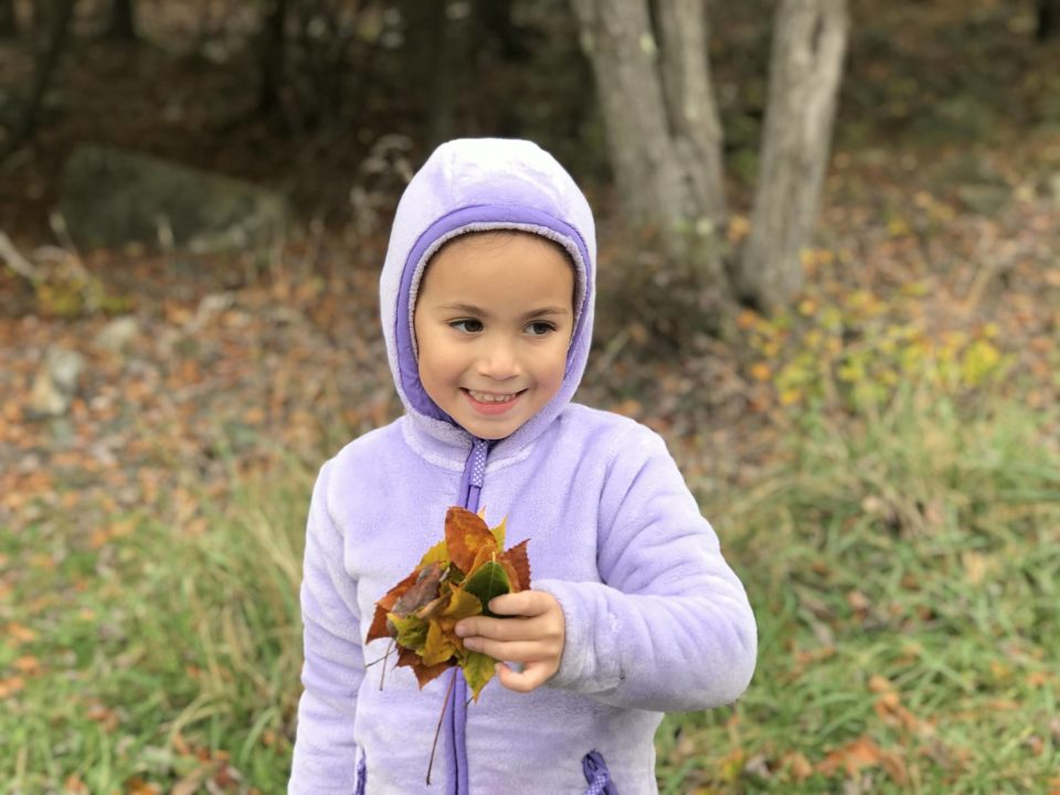 play with your kids - collecting leaves with kids ideas