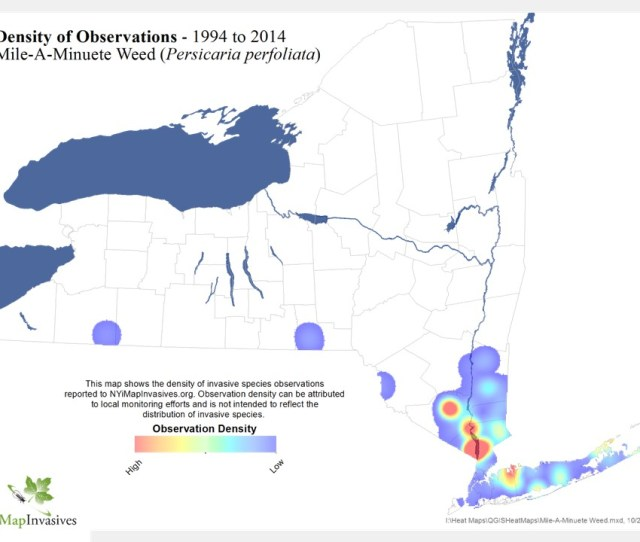 Map Of Counties With Mile A Minute Infestations
