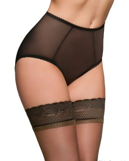 Sheer Mesh Knickers