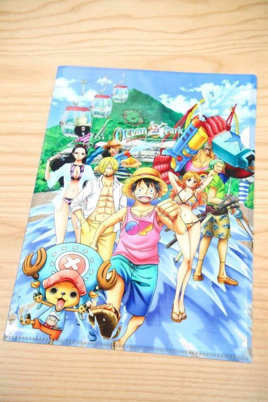 One Piece Folder
