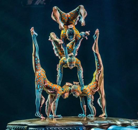 Contortion (Photo Courtesy: Cirque du Soleil)