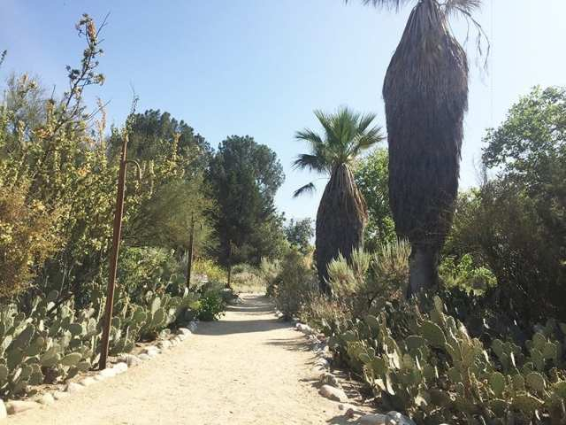 Visit Claremont - Rancho Santa Ana Botanic Garden