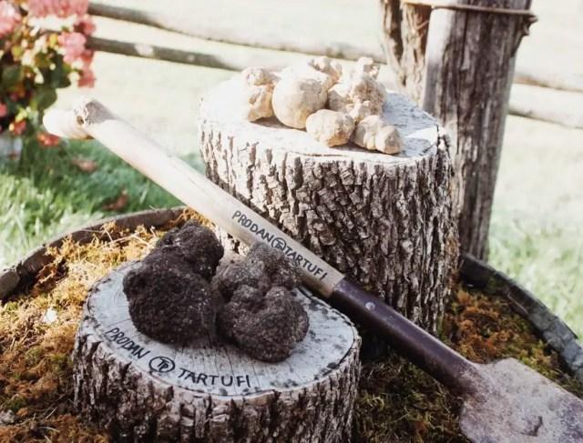 Istrian Truffles from Prodan Tartufi © Kaila Yu