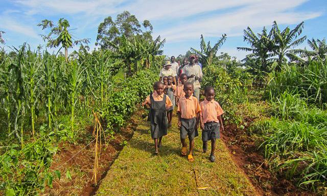 Nyota_organic_farming-7054
