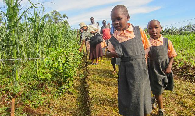 Nyota_organic_farming-7055
