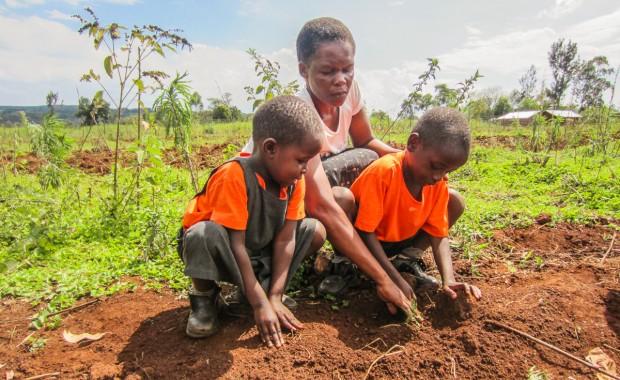 Nyota_Tree-planting-kenya-1315