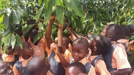 Nyota Förderung durch den Lush Charity Pot