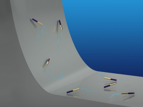Yellow and purple rods with small, thin blue