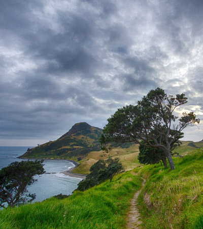 New Zealand the Safe Haven for Super-Rich Preparing for Doomsday