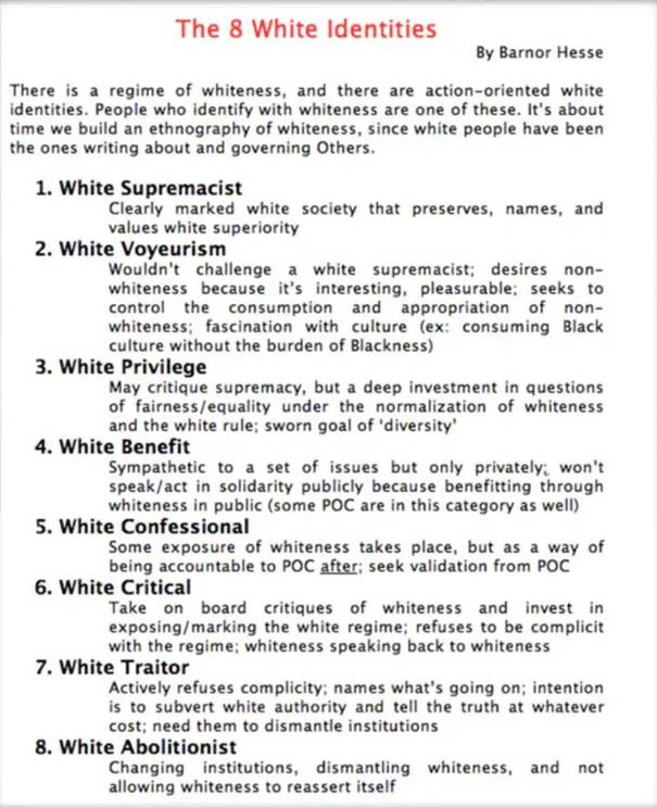 """The dossier outlines the """"eight different categories"""" white people supposedly fall under. Photo / Twitter"""