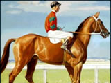 Phar Lap wins the Melbourne Cup