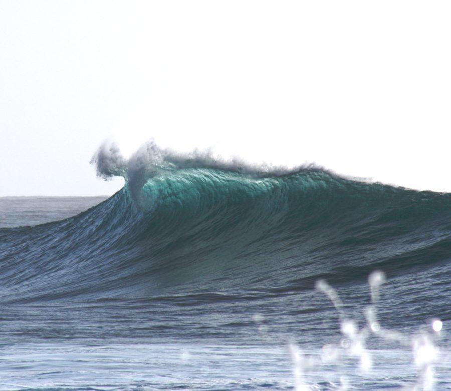 波との出会いは一期一会