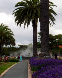 Government Gardens Hot Pool, Rotorua