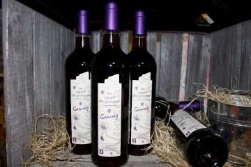 Vin Nouveau