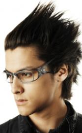 lunettes parasite 2012 optique