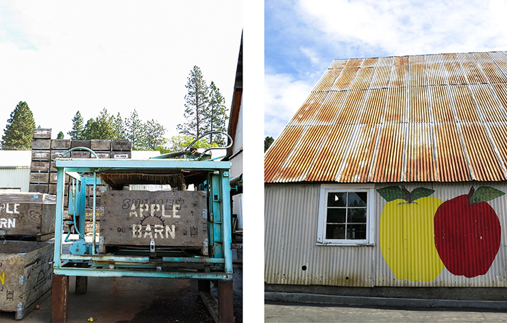 Apple Barn and Building