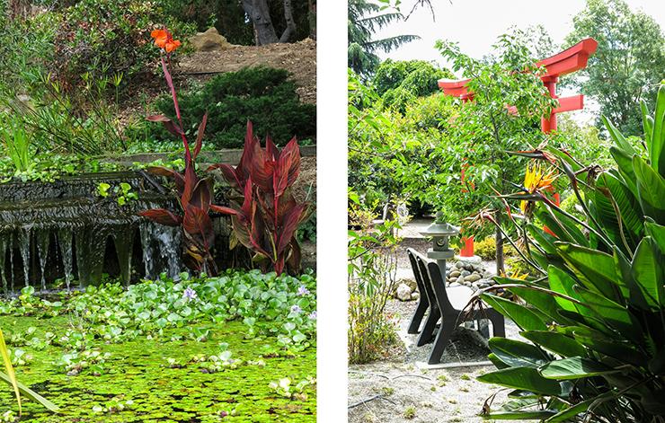 LM Garden 19
