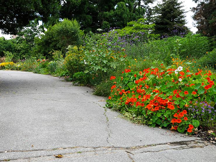 LM Garden 20