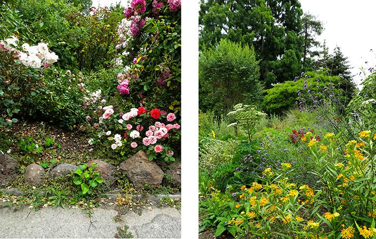 LM Garden 21