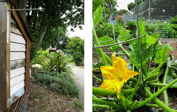 LM Garden 9