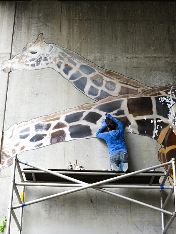 giraffe-15