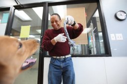 Dog day: Christopher Wright plays with Rudy, a golden retriever, at the Animal Care League. Below, Nancy Morley helps clean windows at the shelter.