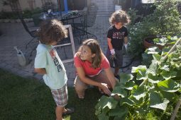 Angie Cataldo spends summers days in their backyard garden with her sons, Jonah, 7, left, and Adam 4. The children are active in the care of the garden and Cataldo uses it as learning tool for them. (DAVID PIERINI/Staff Photographer)