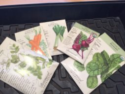 Some cool weather seeds to plant soon.