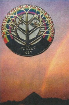 The Flight 427 Disaster Family Support League developed a logo, which is superimposed on a photo of a rainbow taken two weeks after the crash as the workers on the hillside completed the cleanup and were leaving the crash site. | Courtesy of Janine Katonah