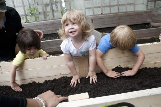 Emerson Garcia, left, Camila Winter and Oliver Tesch, pat down composted manure in the new raised-bed garden at the Day Nursery of Oak Park and River Forest in 2013. | FILE