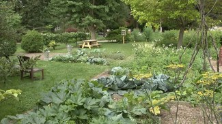 Garden at Cheney Mansion in Oak Park. | Photo provided