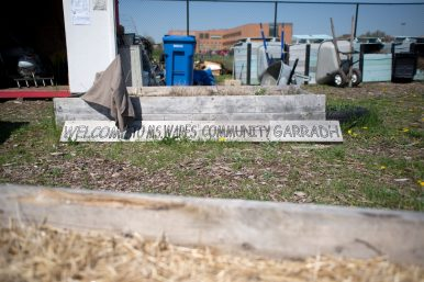 DIGGING IN THE DIRT: Neighbors and students began work at Chicago Farm Lab in the first weekend of May. Farm Lab organizer Marnie Ware says fundraising efforts are ongoing for the 2-acre urban farm. | Photo by Alexa Rogals