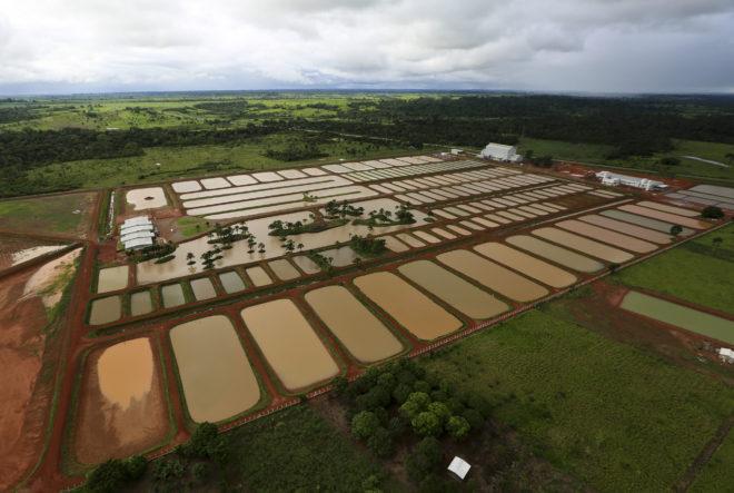Quase R$ 20 milhões foram investidos no complexo que pode está aplicando calote nos produtores do Acre - Foto: Agência Acre